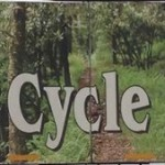 The Vlei Cycle Park.jpg