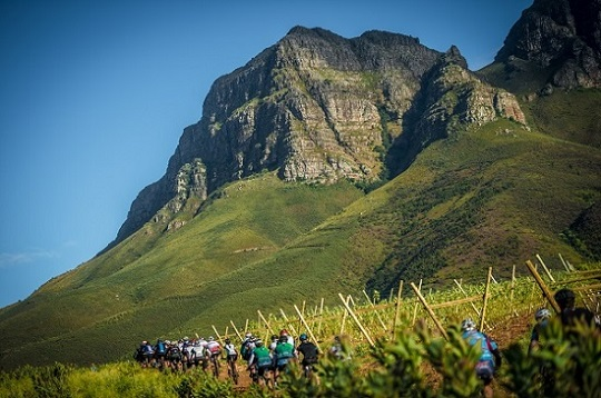 Mountain bikers take in the scenery about 1km from the start of the W2W events at Lourensford Wine Estate. Photo: Tobias Ginsberg