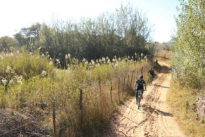 Two riders in action at the Waterberg MTB Encounter.