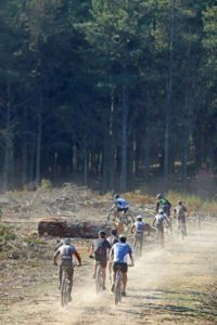 The bunch in action at the Knysna Cycle Tour MTB Race