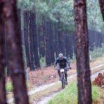 Riding through the Tsitsikamma forest