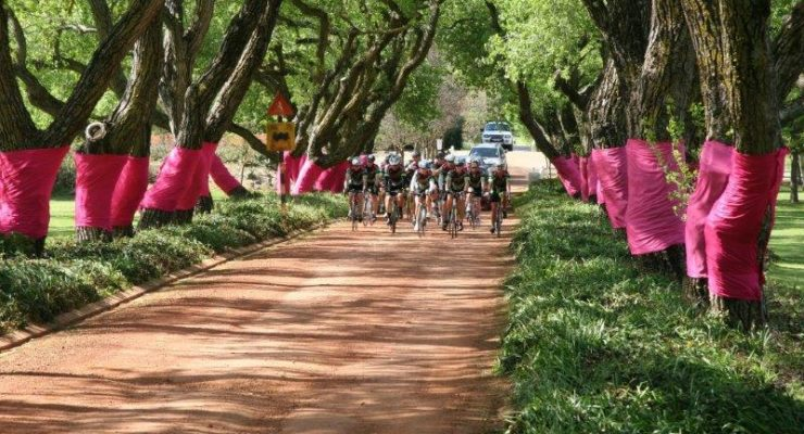 Charity organisation Pink Trees for Pauline, who raise funds to assist cancer patients, will be involved with the Bestmed Tour of Good Hope for the first time in March next year.