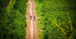 An aerial view of riders during day one of the Wines2Whales Ride.