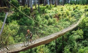 Pictured here is a rider crossing a bridge on stage two of Wines2Whales Race.
