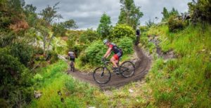 Mountain bikers take a corner on a section of the Wines2Whales Race route on the first day.