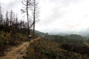 Winelands MTB route