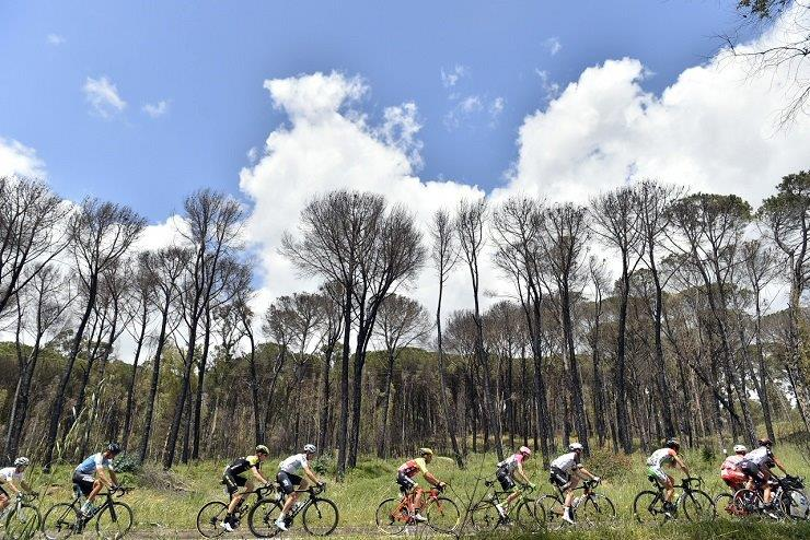 The peloton in action on stage six of the Giro d'Italia