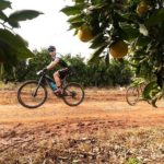 A rider spotted in the citrus orchards on stage one of the PwC Great Zuurberg Trek.
