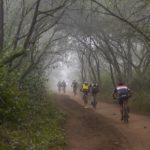 Riders entering an enchanting forest during stage two of the sani2c Race. Photo: Anthony Grote