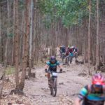 Riders going through a forest during the sani2c Race. Photo: Anthony Grote