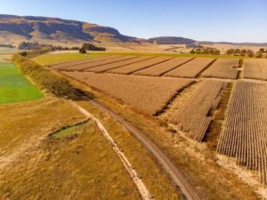 An aerial view of riders during day one of sani2c Trail