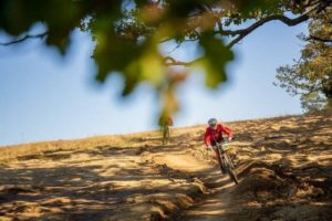 A rider enjoys a descent section on day one of sani2c Trail