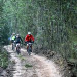 Riders moving between dense forests on jeep tracks during stage two of the Greyt Escape. Photo: Oakpics.com