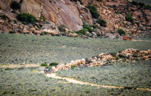 Namaqua Quest MTB Stage Race stage two scenery