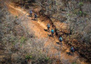 Aerial shot of cyclist moving through and between cattle tracks during stage two of the Berg and Bush 'Descent'. Photo: Tobias Ginsberg