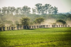 A long line of cyclists stretched out on a dusty section during stage two of the Berg and Bush 'Descent'. Photo: Tobias Ginsberg