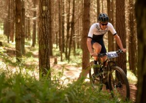A rider moving through a forest section during stage three of the Cape Pioneer Trek. Photo: Carli Smith