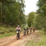 Riders moving between a forest section during stage two of the Cape Pioneer Trek. Photo: Carli Smith