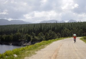 A rider moving along a wide and open track during stage three of the Cape Pioneer Trek. Photo: Carli Smith