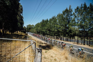 Stage three action Women's Tour Down Under