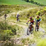 Riders moving along a windy jeep track section during the TransCape MTB Encounter. Photo: Jacques Marais